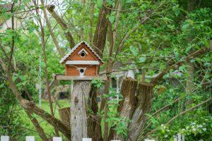 Mangeoire oiseaux - maison pour oiseaux